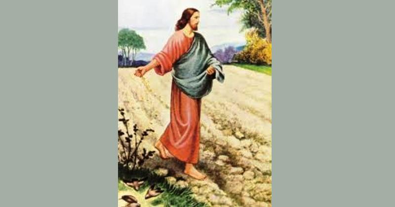 EVANĐELJE NEDJELJOM Iziđe sijač sijati