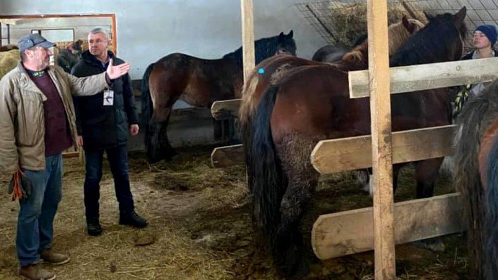 Otkupljena telad i krave na šest adresa lokalnih poljoprivrednika na području Općine Donji Kukuruzari