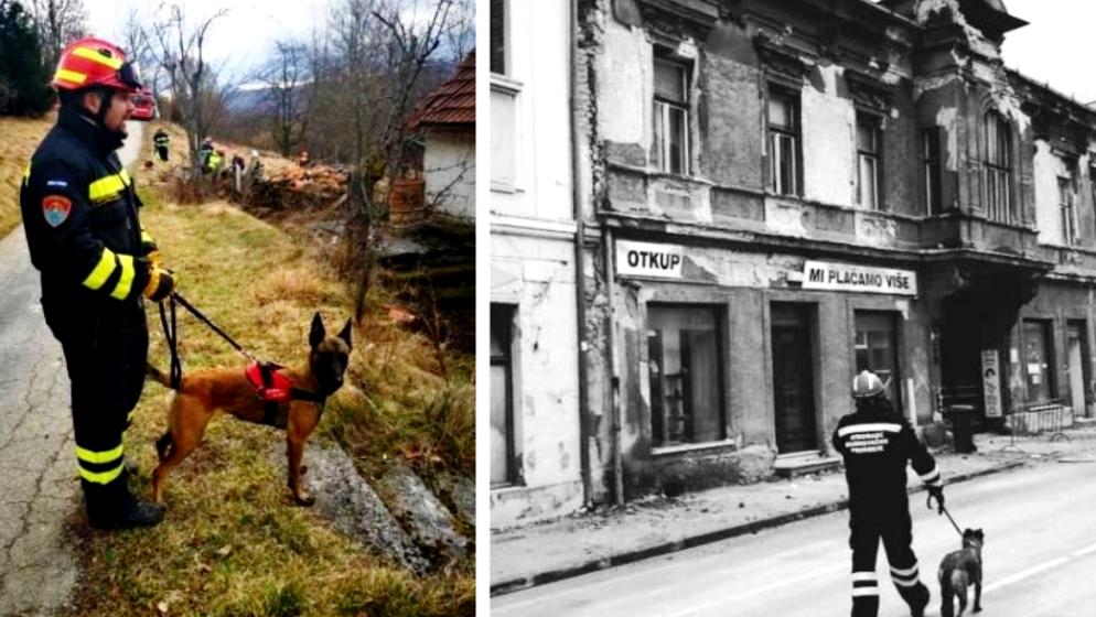 Otrovana belgijska ovčarka Alis koja je spašavala ljude u Petrinji: 'Nije joj bilo spasa, umrla mi je u naručju…'