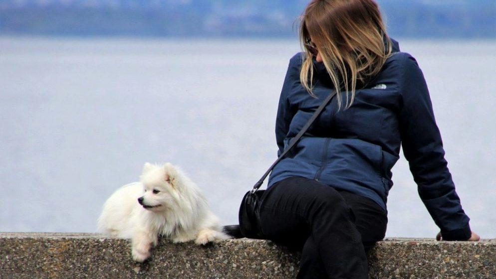 Quebec: Umjesto psa Kanađanka na uzici u vrijeme policijskog sata šetala partnera