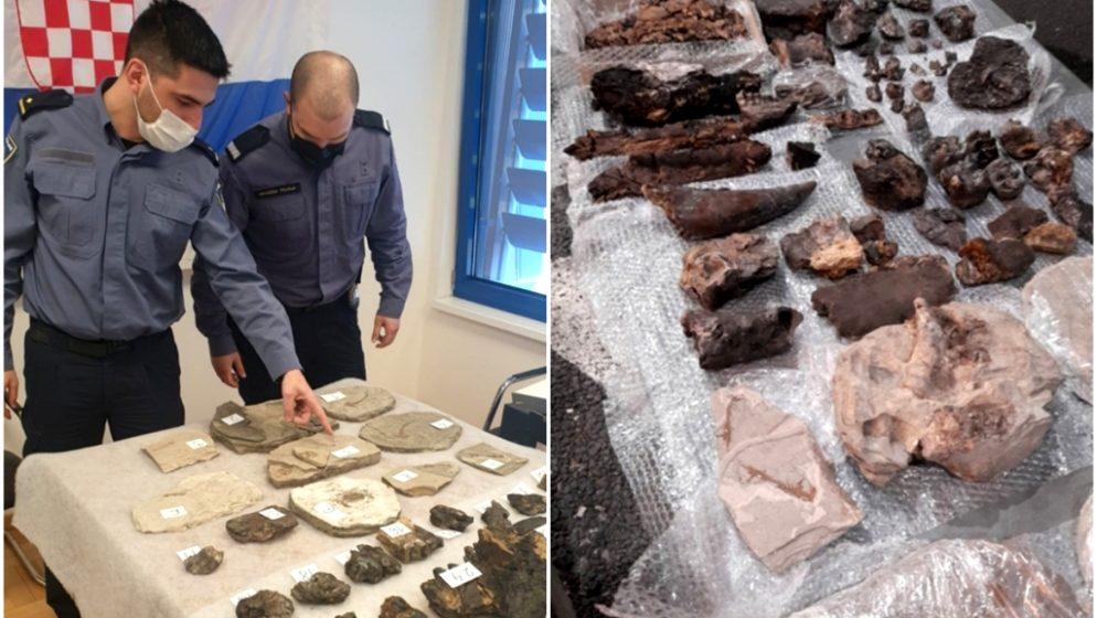 Fosile stare 15 milijuna godina Slovenac pokušao prokrijumčariti iz BiH, uhvaćen na hrvatskoj granici